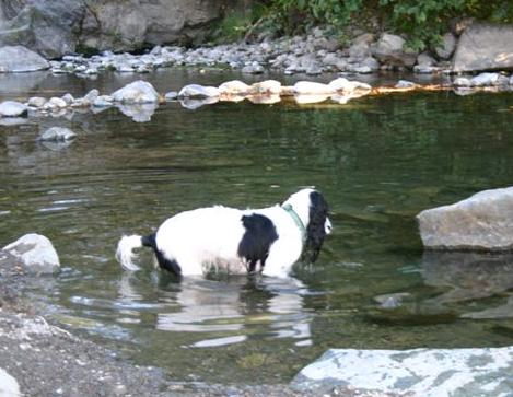 Riley3 aug04